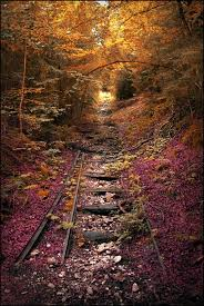 Beautiful Abandoned Places by 111 Best Forgotten Places Images On Pinterest Abandoned Places