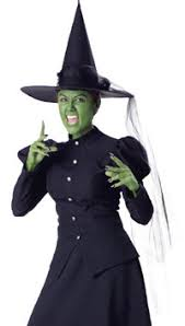 Witch Halloween Costumes Wicked Witch Costume Elite Costume Pop