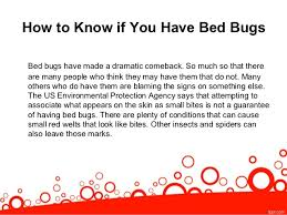 Bed Bugs What To Do Signs You May Need A Bed Bug Exterminator