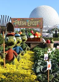 tips for visiting epcot flower u0026 garden festival with kids the