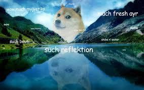 Doge Meme Wallpaper - doge wallpaper google search want to buy some memes pinterest