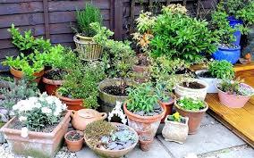 Garden Containers Ideas - garden pots and planters u2013 exhort me