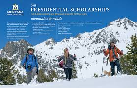 uhp scholarships honors college montana state university