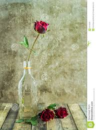 fresh red rose in glass bottle on wooden stock image image 50102387
