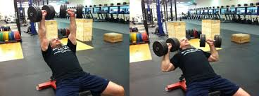 Proper Bench Form How To Bench Press Diesel Sc