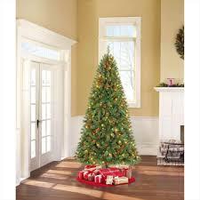 tree ne wall