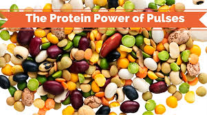 high protein food archives boomer nutrition
