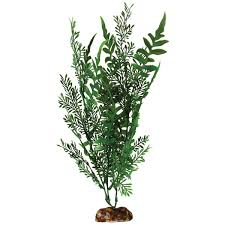 amazon com aqueon 09765 fern aquarium plant 14 inch aquarium