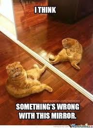 Mirror Meme - haunted mirror by nedesem meme center