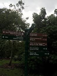 Singapore Botanic Gardens Mrt by Rontravel Singapore Botanic Gardens My Side Of The Story