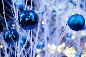 winter christmas fairy blue white nature winter lights forever
