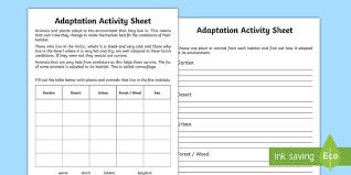adaptation worksheet adaption adaption information worksheet