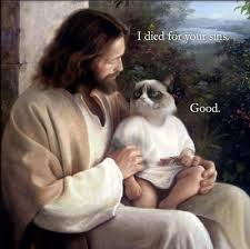 Jesus Cat Meme - jesus grumpy cat meme comics and memes