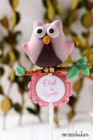 best 25 owl cake pops ideas on pinterest cakepops owl party
