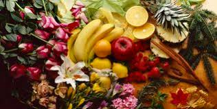 fruit and flowers tropical fruits and flowers arrangement royalty free stock image