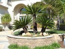 desert home decor desert landscape ideas for front yard christmas lights decoration