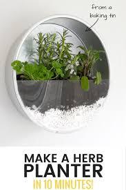 make an indoor herb planter in 10 minutes u2022 grillo designs