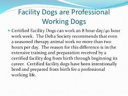 Comfort Dogs Certification What Is A Facility Dog
