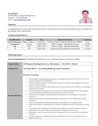 accountant u0027s c v sayed rizvi