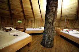 chambre cabane dans les arbres location cabane dans les arbres 5p 2ch insolite chambord au cing