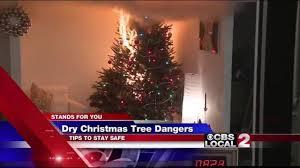 dry christmas trees a fire hazard kesq
