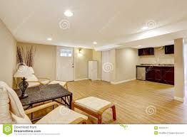 basement mother in law apartment living room and kitchen area