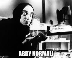 Abby Meme - abby normal imgflip