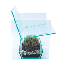 Lucite Rocking Chair A Sleek Modern Lucite Chair That Houses A Prickly Barrel Cactus
