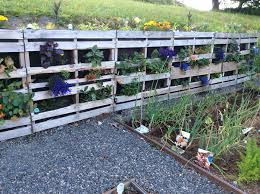 Ideas For Retaining Walls Garden by We Used Pallets To Build A Retaining Wall For Flowers And Veggies