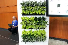 Self Watering Wall Planters Articles With Hanging Christmas Decorations Pictures Tag