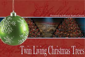 twin living christmas trees meghan garbarino design