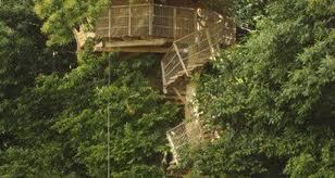 chambre d hote cabane dans les arbres cabane dans les arbres à isigny le buat 25882