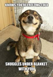Freezing Cold Meme - knows you re freezing cold snuggles under blanket with you good