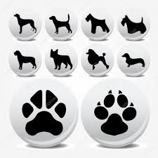 collection of animal foot prints vector icons u2014 stock vector