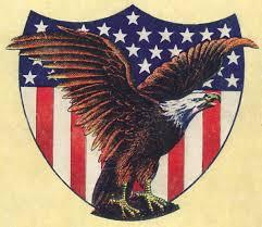 Eagle American Flag America Lies Again