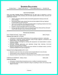 Patient Service Representative Resume Examples by Best 25 Customer Service Resume Ideas On Pinterest Customer