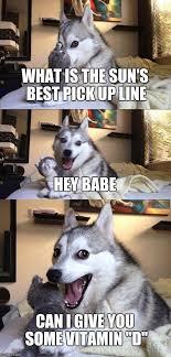 Hey Babe Meme - bad pun dog meme imgflip