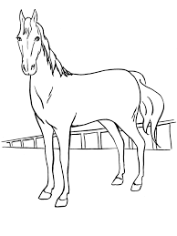 horse coloring pages with paddle coloringstar