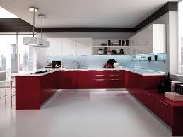 grande cuisine moderne couleur pour cuisine 105 idées de peinture murale et façade