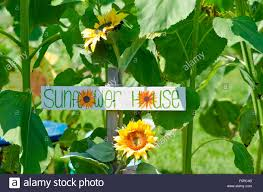 Sunflower house sign in childrens section Community Garden Stock