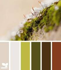 wide open spaces inspiration from design seeds seeds road color