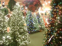 enchanted forest christmas lights an enchanted christmas forest picture of bronner s christmas