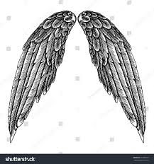 hand drawn vintage wings pair etched stock vector 617356775