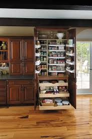 Kitchen Pantry Cabinets by 25 Best Kitchen Pantry Cabinets Ideas On Pinterest Pantry