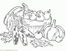 coloring pages fall harvest natural world autumn free printable