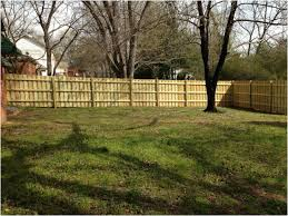 Privacy Fence Ideas For Backyard Backyard Backyard Fencing Ideas Luxury Backyard Astounding