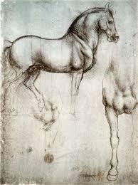 study of horse by leonardo da vinci