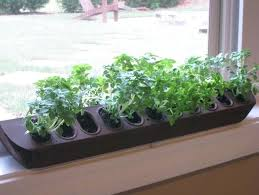 indoor windowsill planter window sill planter surprising indoor windowsill planter box of