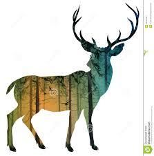 deer 2 royalty free stock image image 34522646 bears moose
