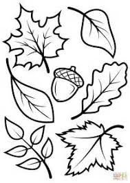 maple leaves clip art color fall illustration abcteach fall
